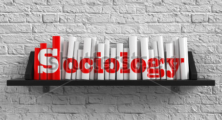stock-photo-sociology-red-inscription-on-the-books-on-shelf-on-the-white-brick-wall-background-education-161383481